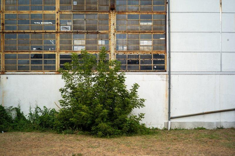Jean-Pierre Damen urban and street photography - L1008598.jpg